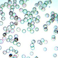 Hollow Glass Microspheres - Density 0.14g/cc