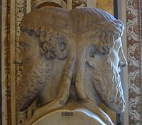Janus Particles are named ater Janus, two-faced Roman God