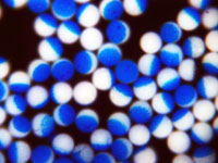 Janus Particles - Blue Polymer Microsphere Core with Partial White Coating