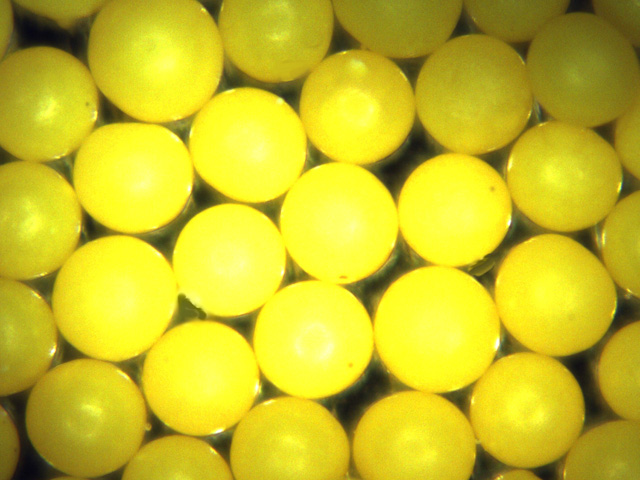 Yellow Polyethylene Microspheres Density 1.00g/cc<br>Spherical Bright Yellow Particles for Flow Visualization and PIV