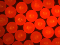 Fluorescent Red Polyethylene Microspheres Density 1.090g/cc<br>Bright Fluorescent Red Particles 605nm Peak.